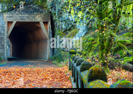 Oneonta Tunnel entrance part of the Historical Columbia River Highway.  Now only open to pedestrians and bikes. - Stock Photo
