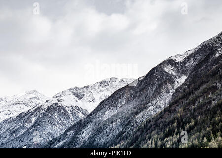 A snow covered slope with conifers in Tyrol - Stock Photo
