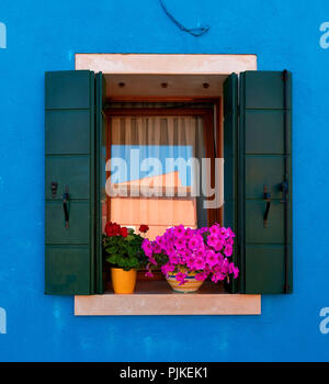Window of the house in Burano with flowers and shutters, Italy - Stock Photo