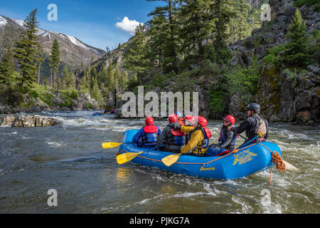 Whitewater rafting on the Middle Fork Salmon River in Idaho with Far and Away Adventures. - Stock Photo