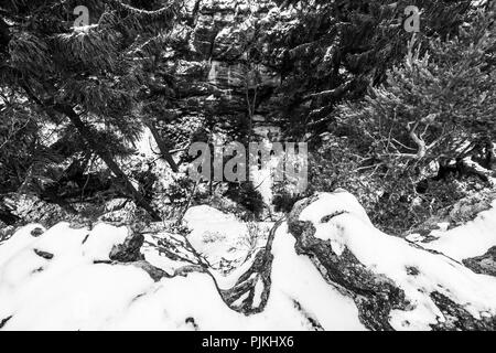 Germany, Saxony, Upper Lusatia, Zittau Mountains, Jonsdorf, Millstone Quarries Chaos in gorge - Stock Photo