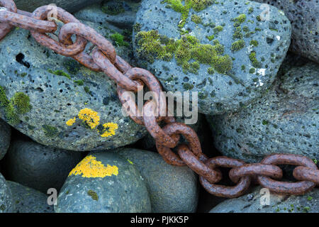 Iceland, rusted anchor chain, mossy stones, lichens - Stock Photo