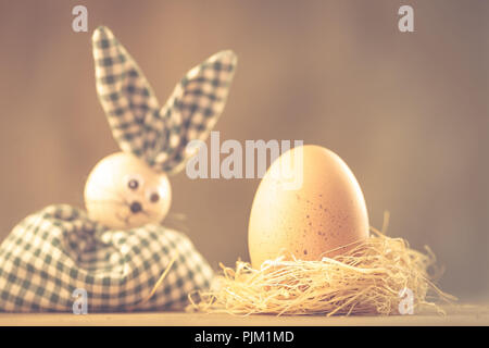 Easter bunny looks at a chicken egg in the nest, Easter motive, - Stock Photo