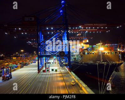 Container loading at the Burchardkai terminal - Stock Photo