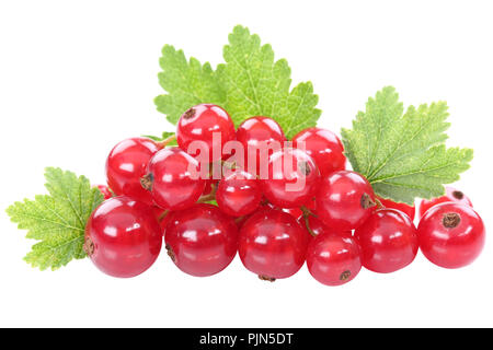 Red currant currants berries berry fruits fruit leaves isolated on white - Stock Photo