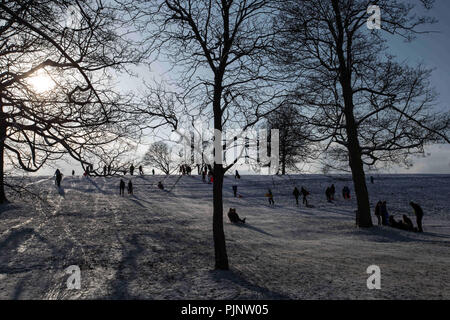 Leeds, UK. 28th Feb, 2018. Local people seen playing on a snowy day at Roundhay's park Leeds.Leeds is the largest city in the northern English county of Yorkshire. It has one of the supreme diverse economies of UK's main employment hearts and has seen the fastest rate of private-sector jobs development of any UK city. It also has the highest ratio of private to public sector jobs of UK's Core Cities. Credit: Rahman Hassani/SOPA Images/ZUMA Wire/Alamy Live News - Stock Photo