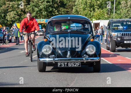 Glasgow, Scotland, UK. 8th September, 2018. A black Volkswagen Beetle on display at Giffnock Village Classic Car Show which returns for the event's fifth year. On show are a range of classic, vintage and unique cars as well as fun and entertainment for all the family. Credit: Skully/Alamy Live News - Stock Photo