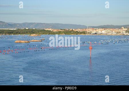 View to Olbia harbor from cruise ship, Sardinia island - Stock Photo