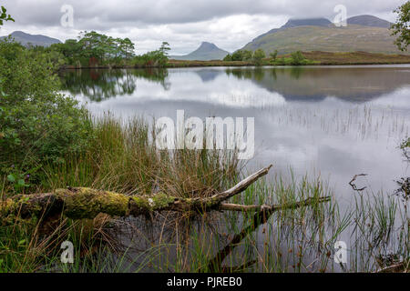 Stac Pollaidh, Wester Ross, Scotland, United Kingdom| - Stock Photo
