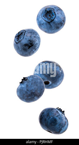 Falling blueberries isolated on a white background. - Stock Photo
