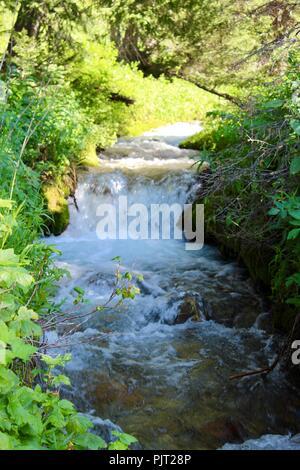 Mountain stream Jedediah Smith Wilderness - Stock Photo