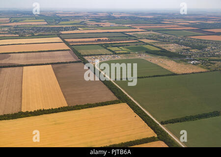 A lot of yellow fields before harvesting from a bird's eye view - Stock Photo