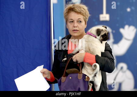 Moscow, Russia. 09th Sep, 2018. MOSCOW, RUSSIA - SEPTEMBER 9, 2018: A woman with a dog at a polling station on Single Voting Day. Russia elects the heads of 26 regions, members of the legislative assemblies of 17 regions and 7 State Duma members. Valery Sharifulin/TASS Credit: ITAR-TASS News Agency/Alamy Live News - Stock Photo