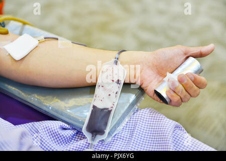 Blood donation, blood transfusion, check specified, fasting, health care in hospital - Stock Photo
