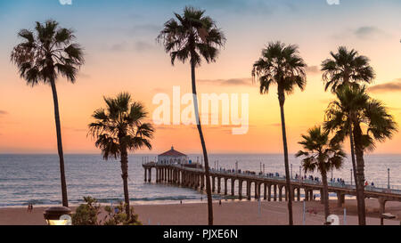 Palm trees and Pier on Manhattan Beach at sunset - Stock Photo