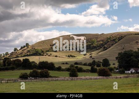 Westbury White Horse, Westbury, Wiltshire, UK - Stock Photo