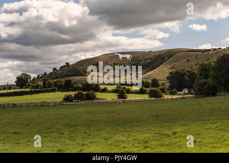 Westbury White Horse, Westbury, Wiltshire, UK - Stock Photo