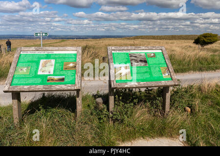 Interpretation boards at Westbury White Horse, Westbury, Wiltshire, England, UK - Stock Photo