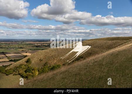 Westbury White, Horse, Westbury, Wiltshire, UK - Stock Photo