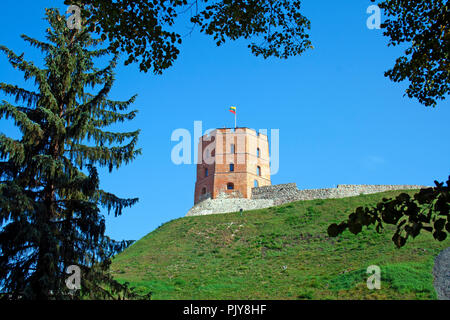 Gediminas' Tower or Castle, the remaining part of the Upper Castle in Vilnius, Lithuania with lithuanian flag waving on a green hill and blue sky - Stock Photo