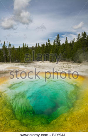The Morning Glory Pool, Yellowstone National Park, Wyoming - Stock Photo