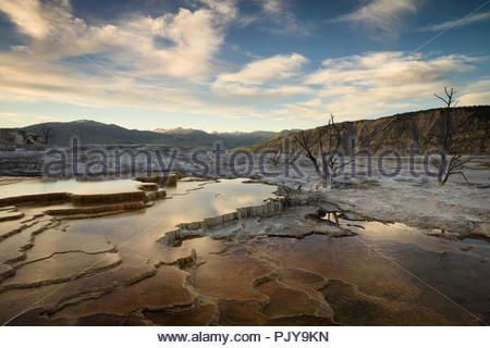 Mammoth Hot Springs at Sunset, Yellowstone National Park, Wyoming - Stock Photo