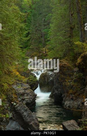 Lower Falls, Little Qualicum Falls Provincial Park, British Columbia, Canada - Stock Photo