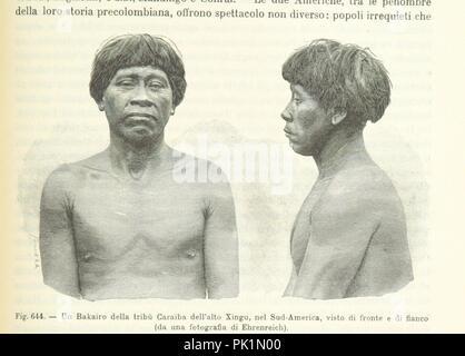 Image  from page 1309 of 'Antropologia generale. Lezioni su l'uomo secondo la teoria dell'evoluzione ... raccolte e pubblicate ... da G. Raverdino e G. B. Vigo' . - Stock Photo