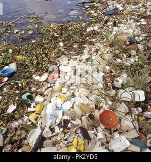 Sea pollution selection of discarded floating plastic packaging waste debris litter garbage junk washed up shoreline Dominican Republic Caribbean Sea - Stock Photo