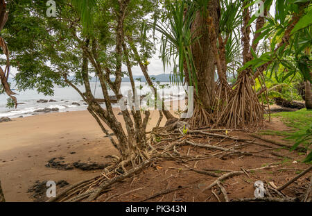 Beach, Corcovado National Park, Osa Peninsula, Costa Rica - Stock Photo