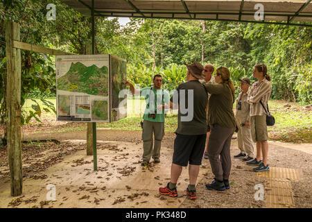 Tour guide with a Tourists, Tenorio Volcano National Park, Costa Rica - Stock Photo