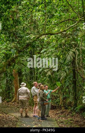 Tour guide with tourists, Tenorio Volcano National Park, Costa Rica - Stock Photo