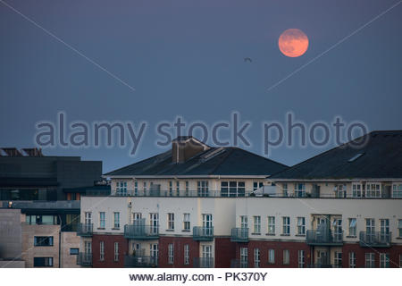Moon rise over the Waterside Apartments, Grand Canal Dock, Docklands, Dublin, Leinster, Ireland - Stock Photo