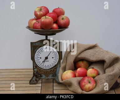 A bag filled with red apples for weighing on the old kitchen scale - Stock Photo