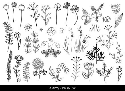 Floral graphic elements big vector set. Doodle flowers and plants hand drawn illustrations. Forest, mountains, and meadow herbs isolated on white - Stock Photo