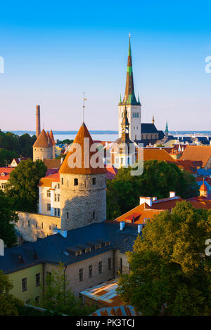 Tallinn skyline, view of the medieval Lower Town Wall and towers with St Olaf's Church in the distance, Tallinn, Estonia. - Stock Photo