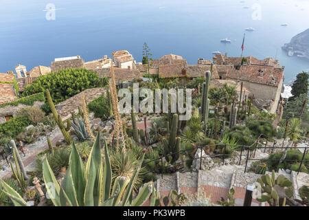 Francia Nizza Eze Città medievale giardino botanico succulente 9 - Stock Photo