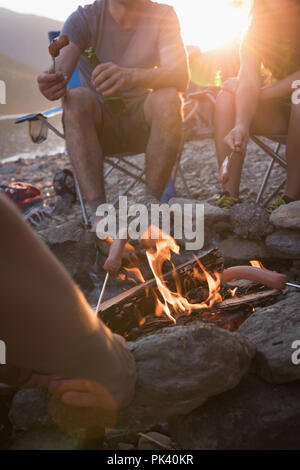 Group of friends roasting hot dogs on campfire - Stock Photo