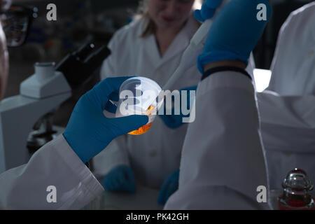 Scientist using pipette in laboratory - Stock Photo