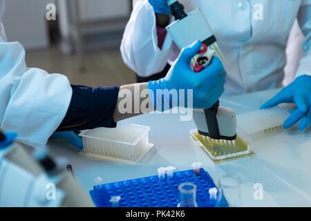 Female scientists using pipette in laboratory - Stock Photo