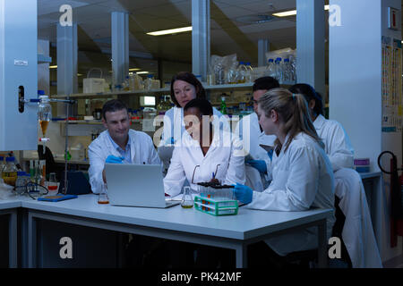 Team of scientist using laptop in laboratory - Stock Photo