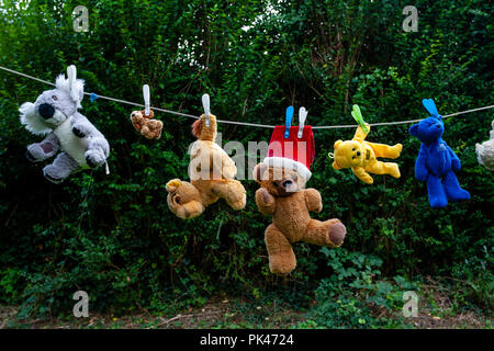 Teddy Bears Drying On A Washing Line, Lewes, East Sussex, UK - Stock Photo