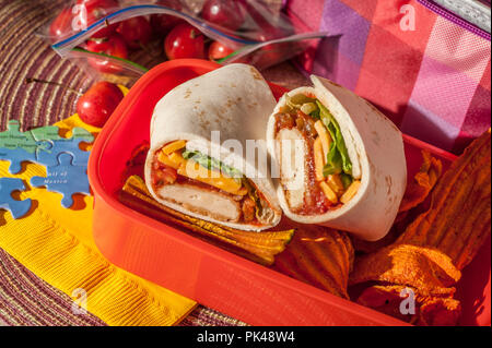 South West Chicken and Cheese Burrito - Stock Photo