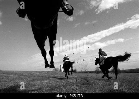 Steeplechase riders sail over a jump at the Oatlands Point to Point Spring races. - Stock Photo