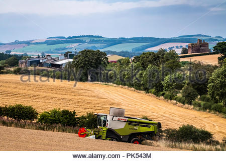 Cessford, Morebattle, Kelso, Scottish Borders, UK. 18th August 2018.  A combine harvesting crops on the hills near Kelso in the Borders. - Stock Photo