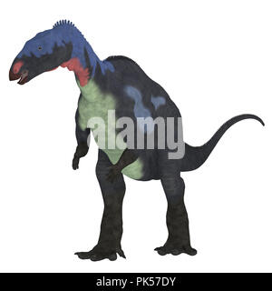 Camptosaurus Dinosaur on White - Camptosaurus was a herbivorous ornithischian dinosaur that lived in North America during the Jurassic Period. - Stock Photo