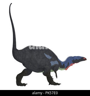 Camptosaurus Dinosaur Tail - Camptosaurus was a herbivorous ornithischian dinosaur that lived in North America during the Jurassic Period. - Stock Photo