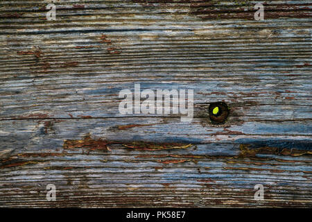 weathered barn wood siding rustic background texture - Stock Photo