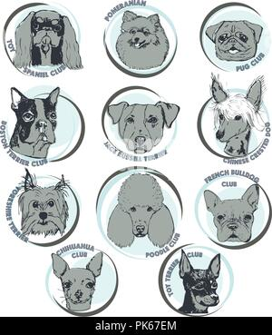 Dog vector illustration. Hand drawn dog portraits with breed names.Sketch of purebred small dogs. T-shirt print template for dog lovers. Logo elements - Stock Photo