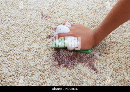 Female hand cleans the carpet with a sponge and detergent. - Stock Photo